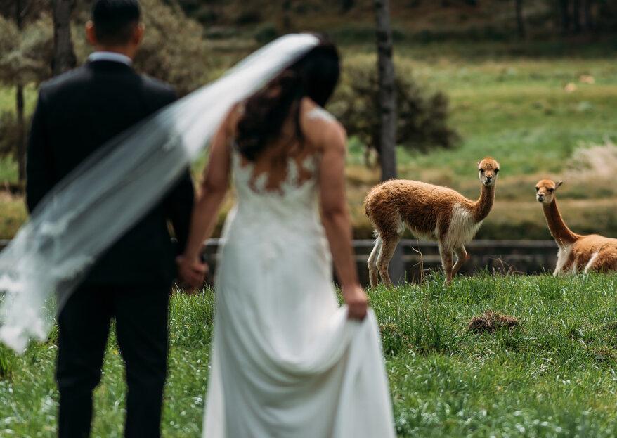 Ulicces y Helen: un matrimonio espiritual en Cajamarca que te dejará sin palabras