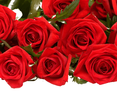 Flores y eventos Las Tres Rosas